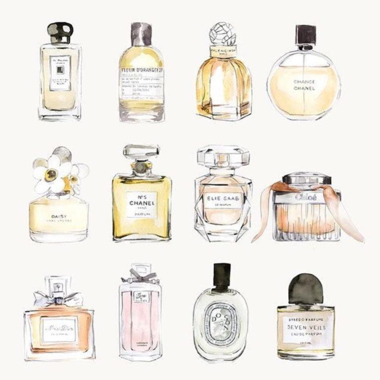 Parfüms erklärung in kurzform